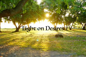 Light on Desires