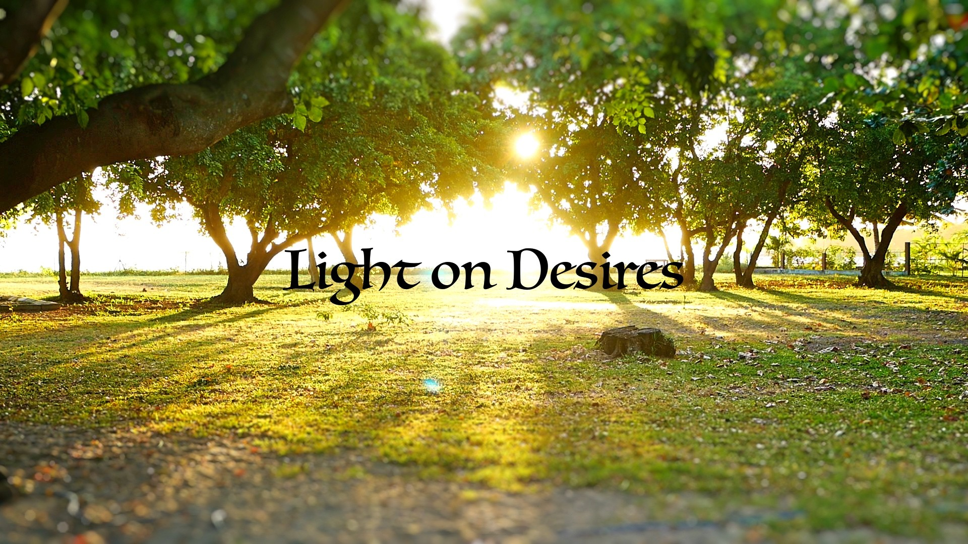 Light on Desires